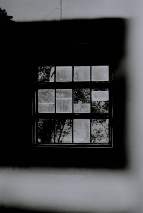 The  Window_c0018169_9565346.jpg