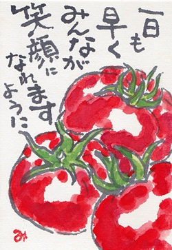 熊本のトマト_b0140270_845773.jpg