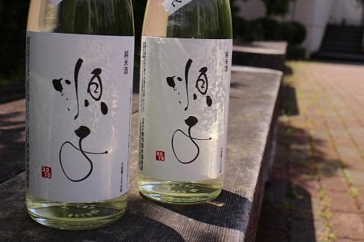 熊本支援募金活動-「順子」販売開始のお知らせ_b0016474_1225992.jpg