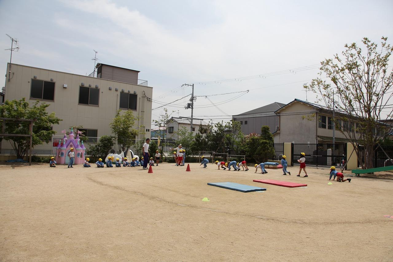 体操(年長・年中組)_b0277979_1655122.jpg