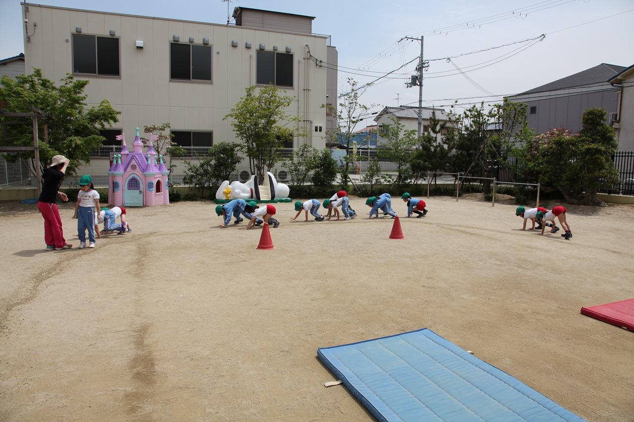 体操(年長・年中組)_b0277979_16554411.jpg