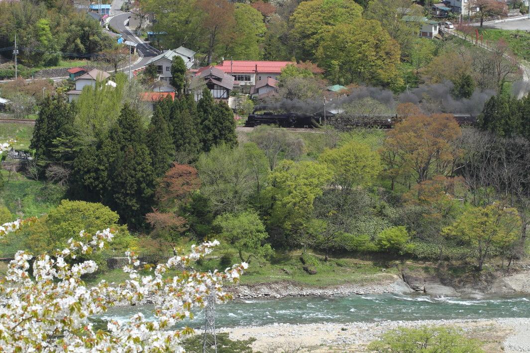 新緑の利根川 - 2016年桜・上越線 -  _b0190710_23224491.jpg