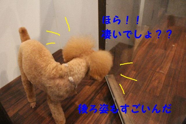 happy birthday♪_b0130018_18371093.jpg