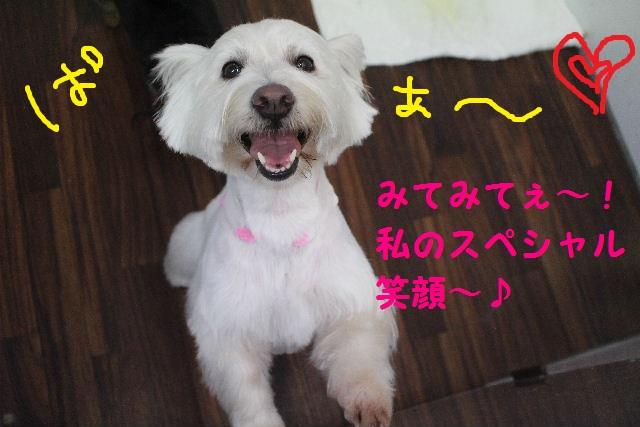 happy birthday♪_b0130018_18392728.jpg