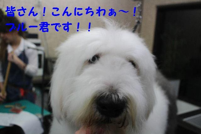 happy birthday♪_b0130018_18442658.jpg