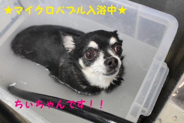 happy birthday♪_b0130018_8125685.jpg
