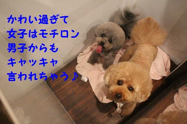 happy birthday♪_b0130018_8163846.jpg