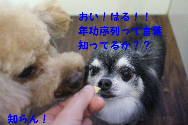 happy birthday♪_b0130018_8193588.jpg