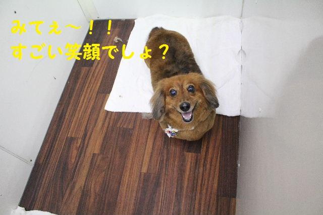 happy birthday♪_b0130018_893876.jpg