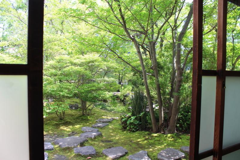 喜楽亭で楽しむ おいしい日本茶 4月_b0220318_21072546.jpg
