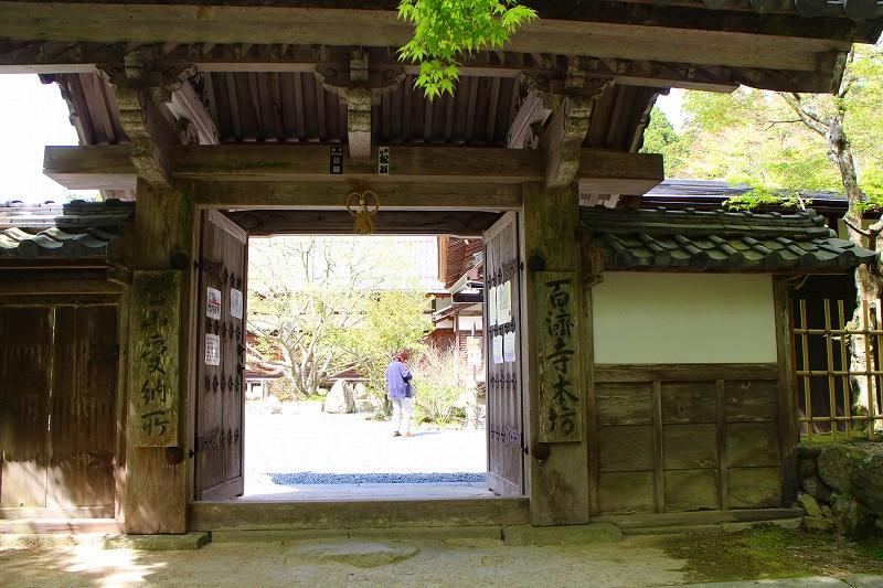 琵琶湖、湖東三山の一つ「百濟寺」20160423_e0237645_14301236.jpg