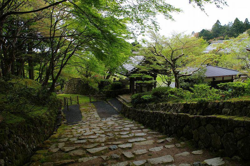 琵琶湖、湖東三山の一つ「百濟寺」20160423_e0237645_14302911.jpg