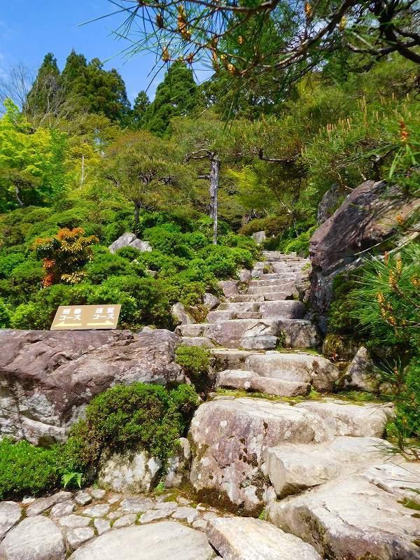 琵琶湖、湖東三山の一つ「百濟寺」20160423_e0237645_14304368.jpg