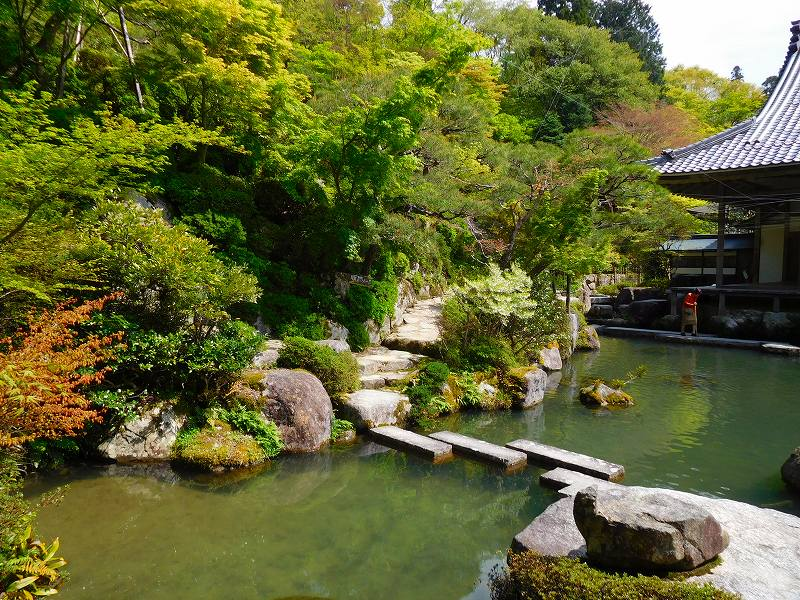 琵琶湖、湖東三山の一つ「百濟寺」20160423_e0237645_14311612.jpg