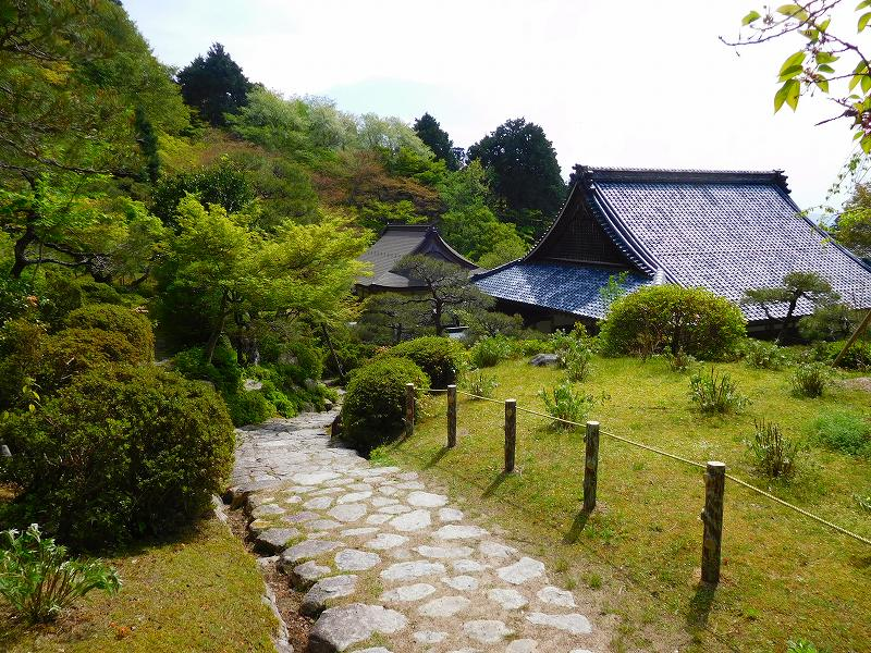 琵琶湖、湖東三山の一つ「百濟寺」20160423_e0237645_14313025.jpg