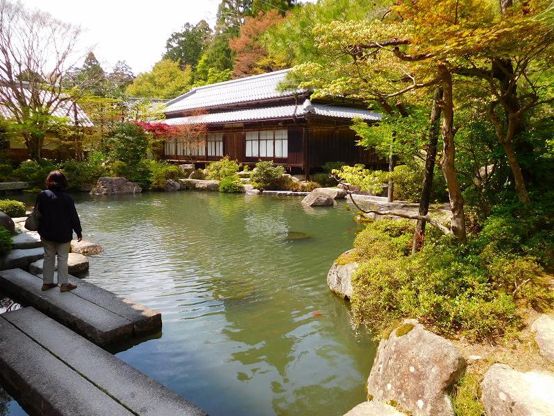 琵琶湖、湖東三山の一つ「百濟寺」20160423_e0237645_1431469.jpg