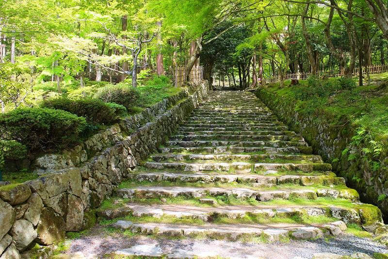 琵琶湖、湖東三山の一つ「百濟寺」20160423_e0237645_14322380.jpg
