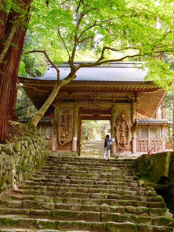 琵琶湖、湖東三山の一つ「百濟寺」20160423_e0237645_14331697.jpg