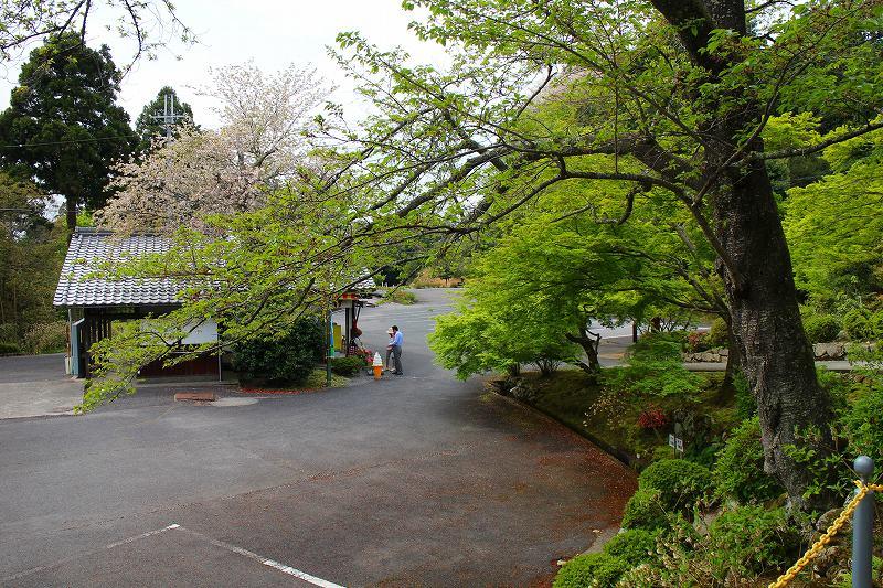琵琶湖、湖東三山の一つ「百濟寺」20160423_e0237645_14354743.jpg