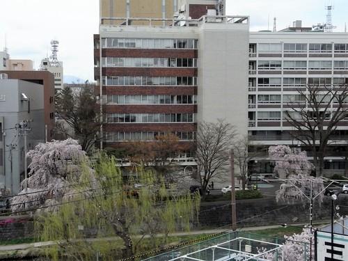 春の新着!Ⅴ ~ザ・ニッポンラグジュアリー~ 【SHATIHOKO】の素 編_c0177259_382031.jpg