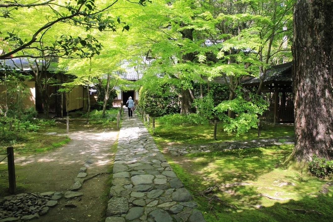 蓮華寺 ~30年前の記憶の柱位置~_a0107574_17450119.jpg