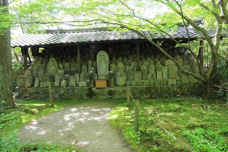 蓮華寺 ~30年前の記憶の柱位置~_a0107574_17452249.jpg