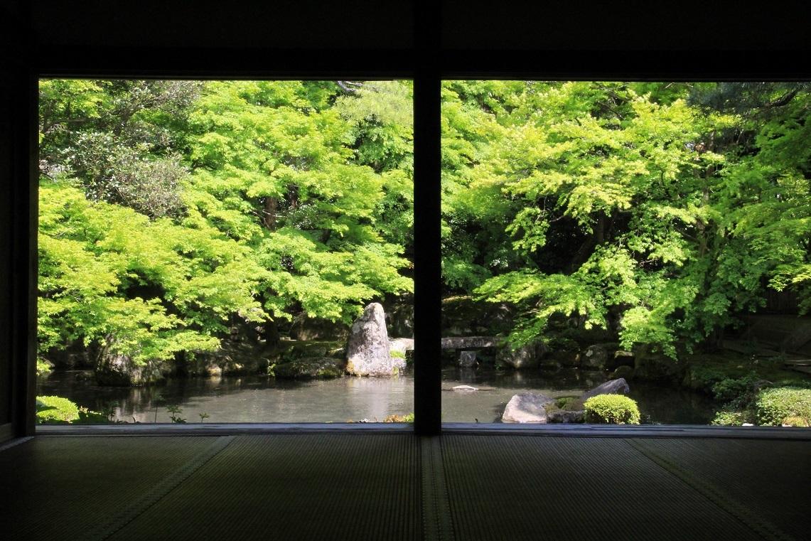 蓮華寺 ~30年前の記憶の柱位置~_a0107574_17460162.jpg