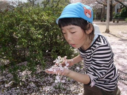 【千葉新田町園】お花見_a0267292_10323115.jpg