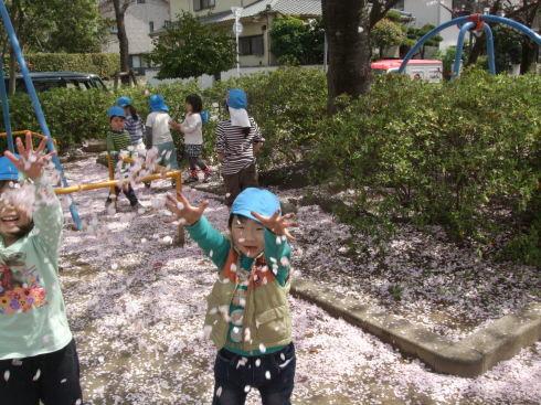 【千葉新田町園】お花見_a0267292_10351086.jpg