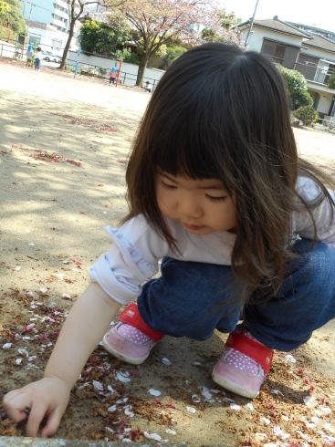 【千葉新田町園】お花見_a0267292_10594025.jpg