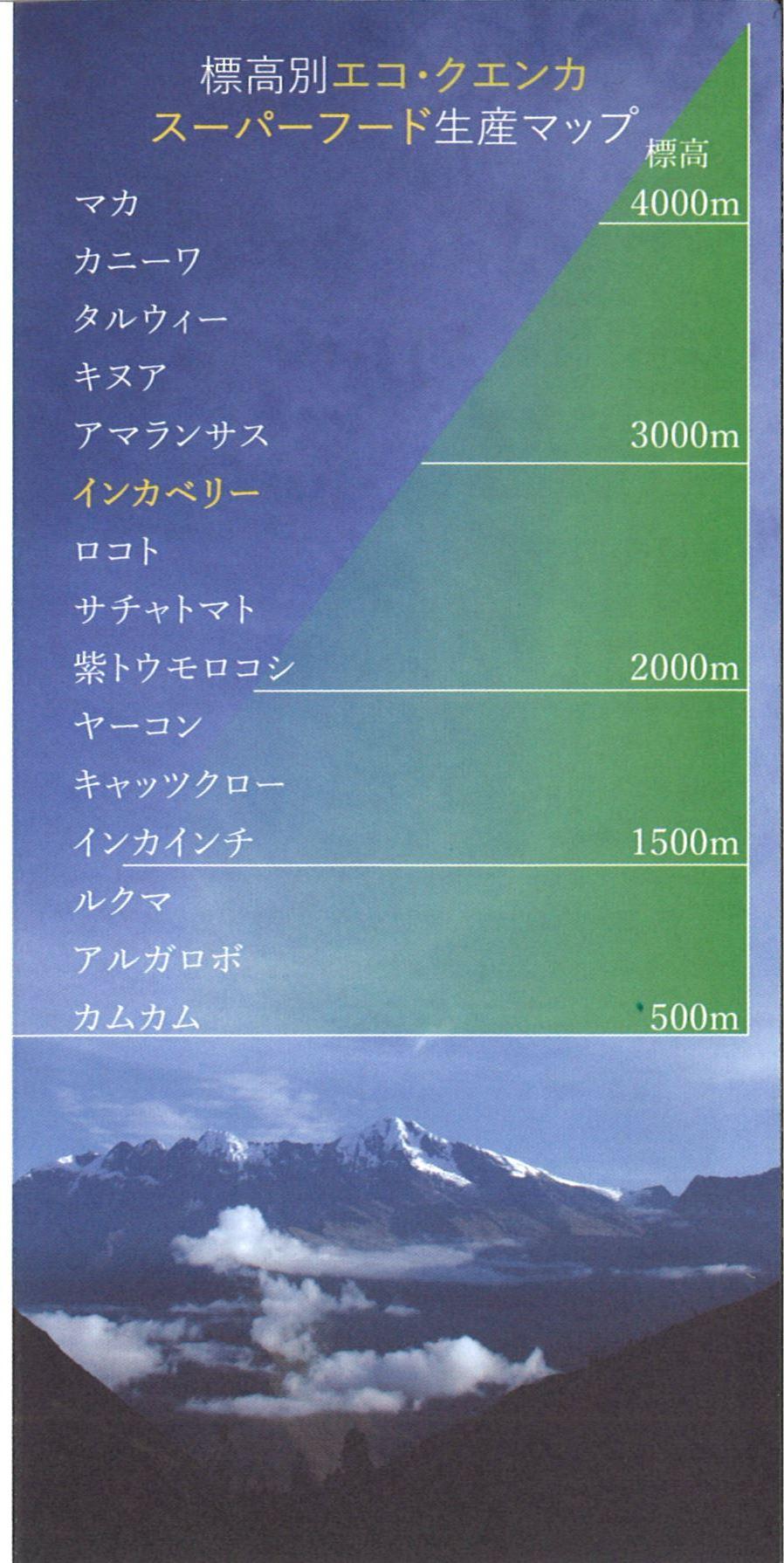 f0353108_209371.jpg