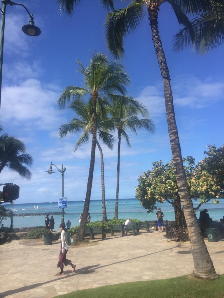 Hawai☆_c0294909_1774065.jpg