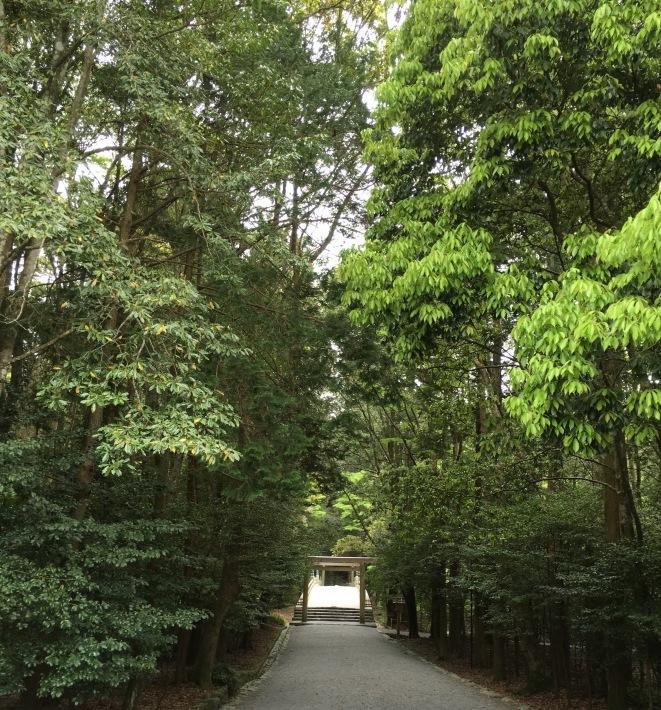 Tea Ceremony at Ise Jingu Shrine_d0334837_09024807.jpeg