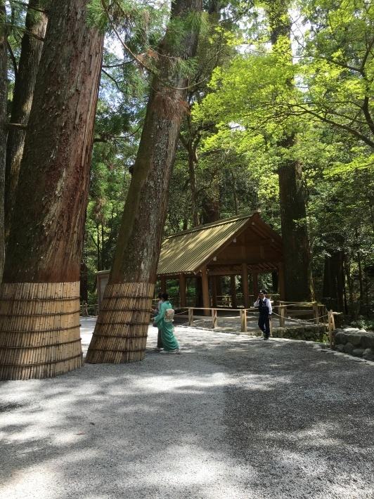 Tea Ceremony at Ise Jingu Shrine_d0334837_09361122.jpeg