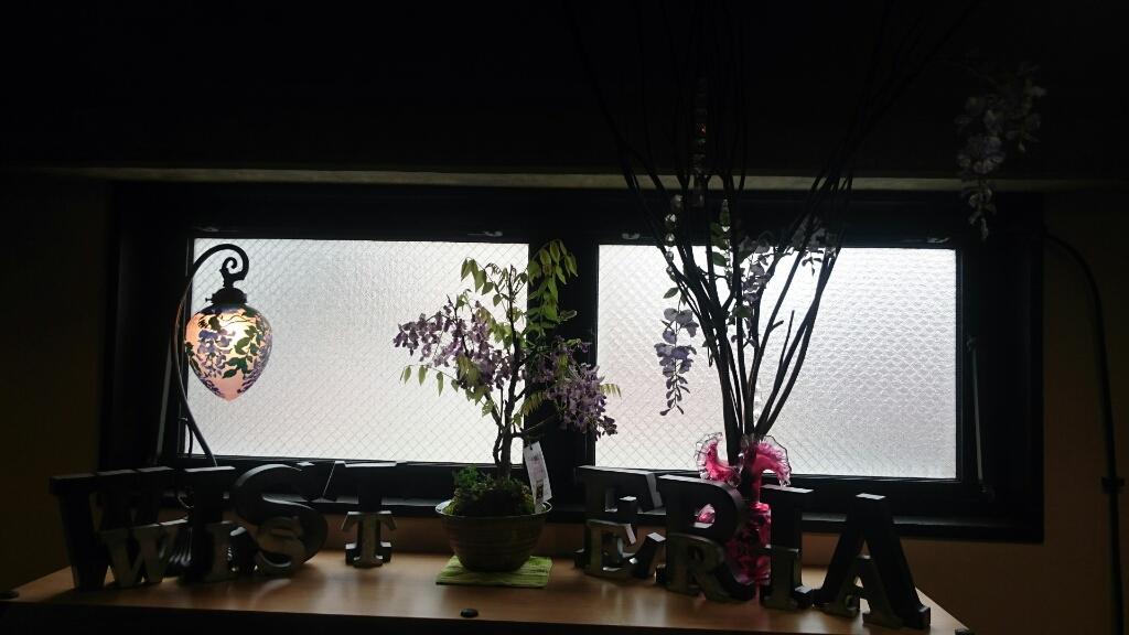 藤の鉢植え_d0115243_09432480.jpg