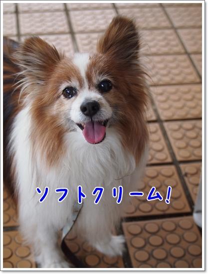 d0013149_00292436.jpg