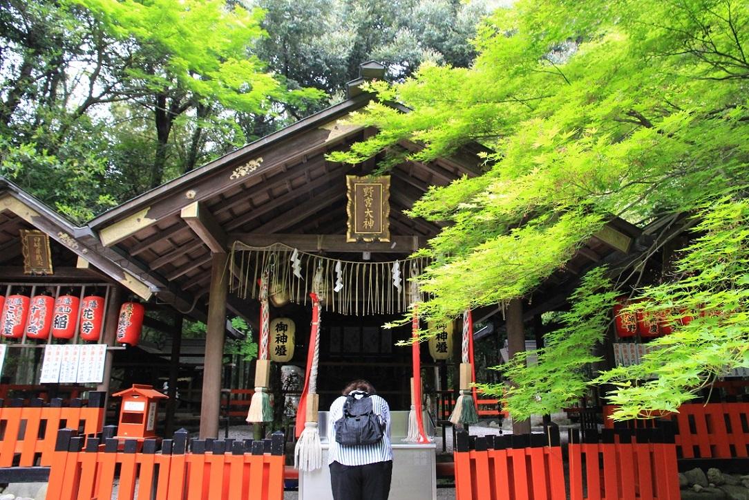 嵐山を歩くその1 ~野々宮神社、大河内山荘~_a0107574_19011485.jpg