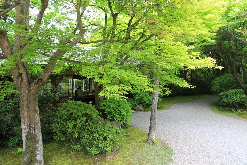 嵐山を歩くその1 ~野々宮神社、大河内山荘~_a0107574_19482439.jpg