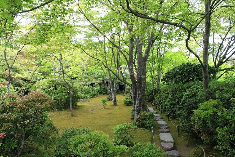 嵐山を歩くその1 ~野々宮神社、大河内山荘~_a0107574_19494378.jpg