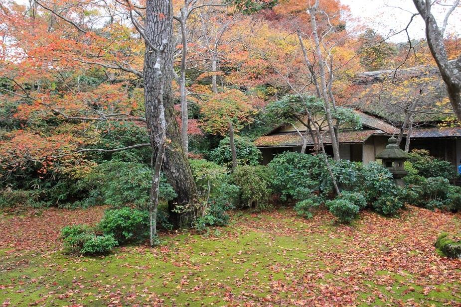 嵐山を歩くその1 ~野々宮神社、大河内山荘~_a0107574_19495326.jpg