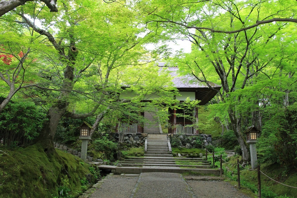 嵐山を歩くその2  ~常寂光寺、ミュージアム季朝~_a0107574_20025264.jpg