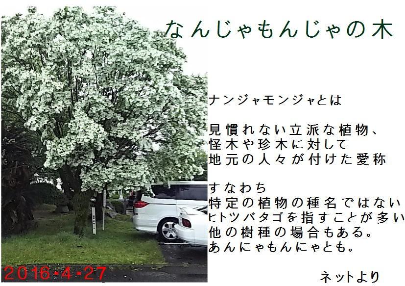 f0003174_15343434.jpg