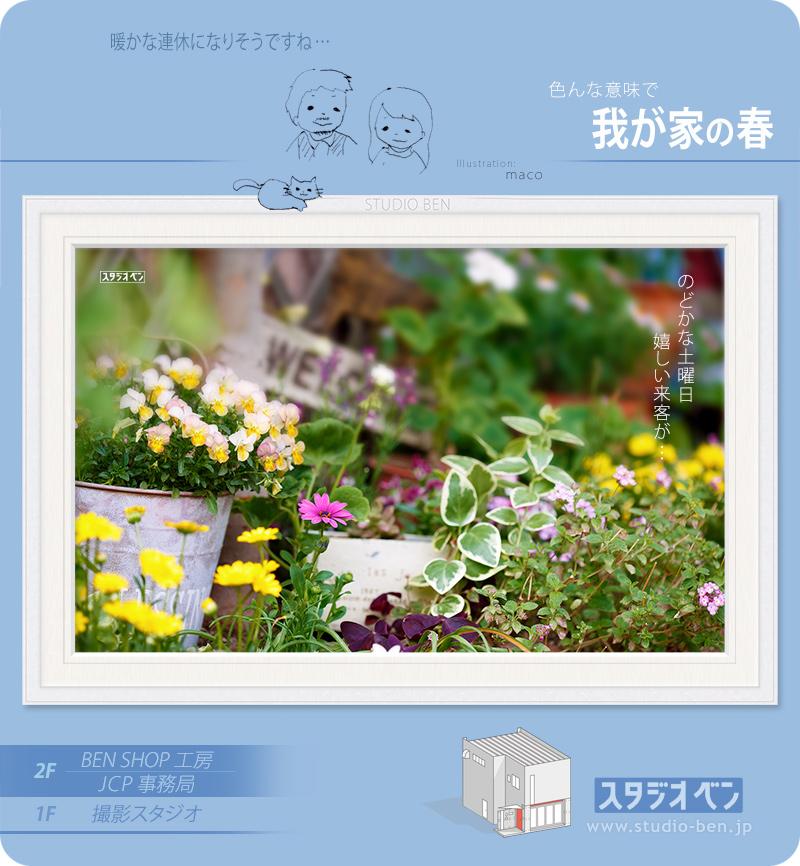 春ですねぇ..._c0210599_234414.jpg