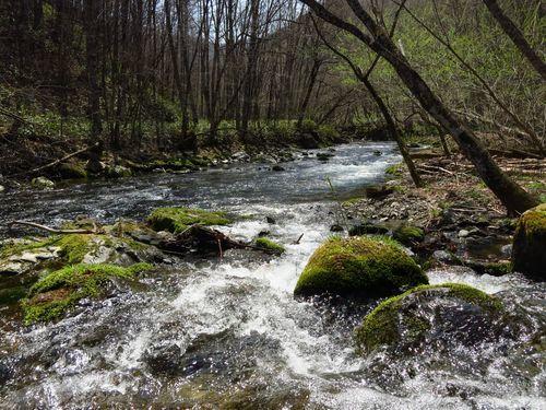 大川渓流ロードを遡る~北国の春(2)早春と春の境目~_b0206037_07265928.jpg