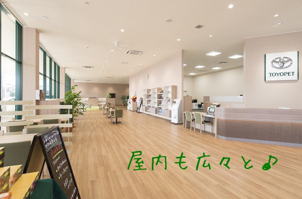 鈴木なつ 69DV.com! Pics Suzuki Natsu Gallery Page 1!