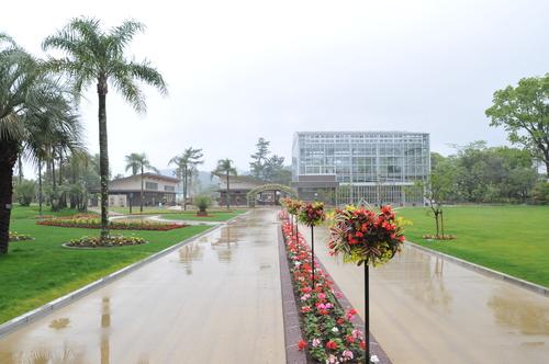 県立青島亜熱帯植物園 160426_a0043276_19283648.jpg