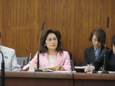 4/28 外交防衛委員会で質問しました。_f0150886_15204278.jpg