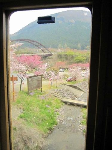 芝桜&わたらせ渓谷鉄道 @群馬_b0157216_21504974.jpg