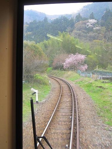 芝桜&わたらせ渓谷鉄道 @群馬_b0157216_2151771.jpg