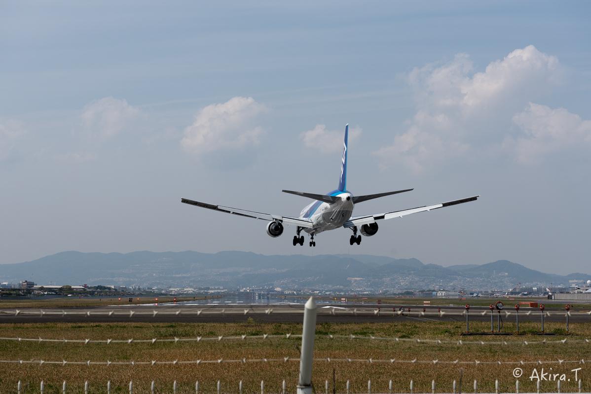 大阪伊丹空港 千里川堤防 -1-_f0152550_21115563.jpg